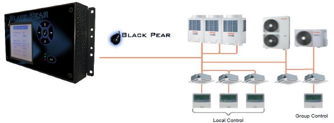 Black Pear Topology